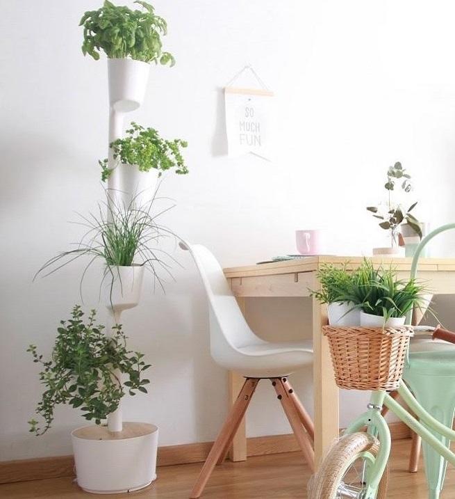 Citysens urban garden at home