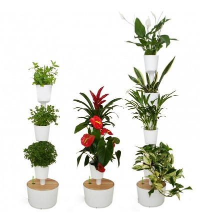 Customize your own hydroponic vertical garden