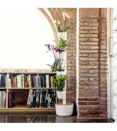 Vertikaler Blumentopf mit Orchideen