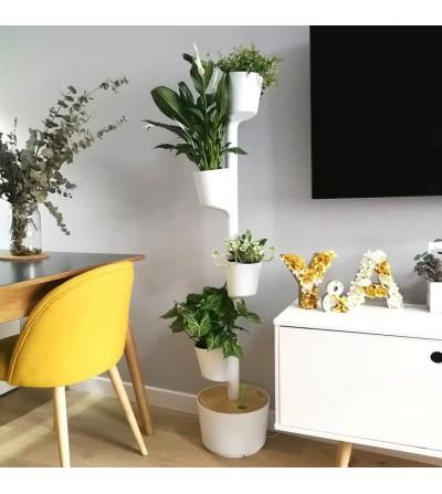 Vertikaler Blumentopf mit Pflanzen in ruhigem Blau