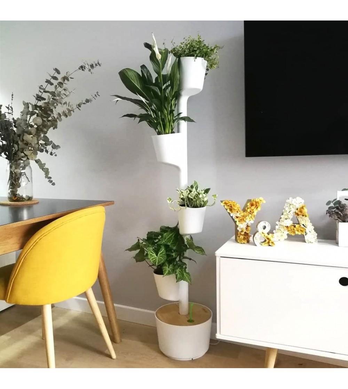 Macetero vertical con plantas de interior