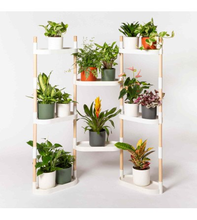 Customize you 8-tray plant shelves