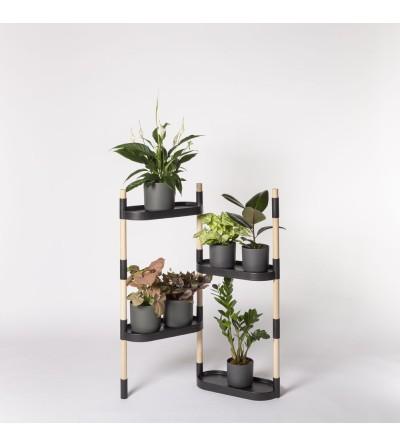 Prestatgeria per plantes