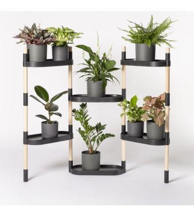 plant shelves indoor