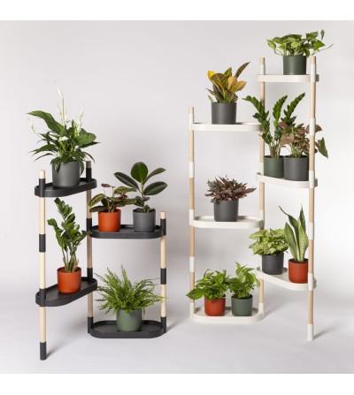plant shelf indoor