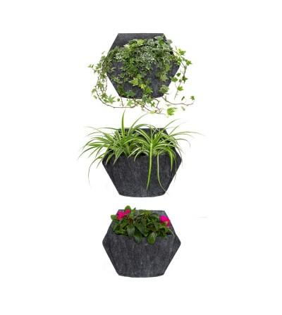 Wand-Blumentopf mit Freilandpflanzen