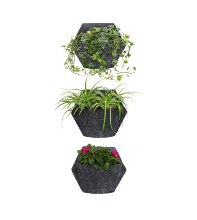 vasi da parete con piante da esterno
