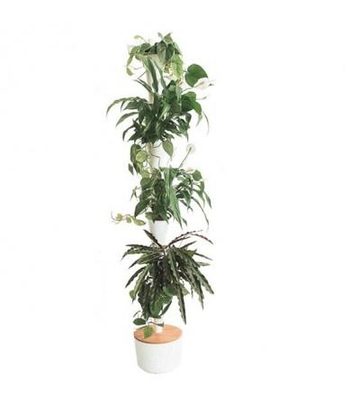 Vertikaler Blumentopf