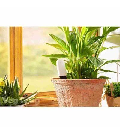 Sensor plantes bluetooth