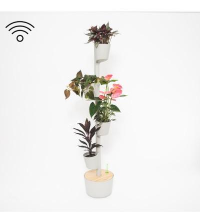 Macetero vertical con autorriego WiFi