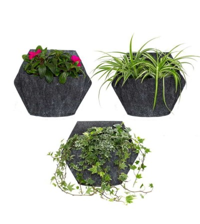 Pack of 3 wall planter with outdoor plants