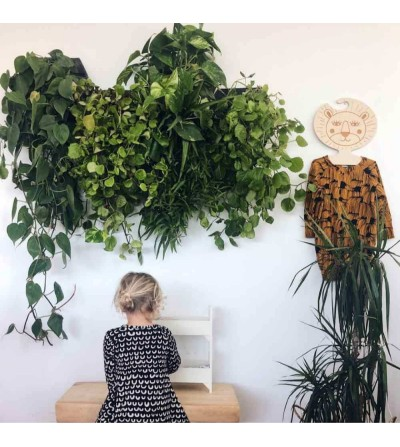 Crea el teu jardí vertical amb testos de paret