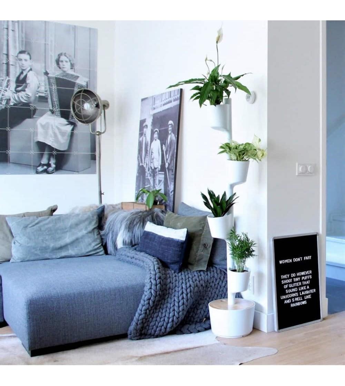 Macetero vertical con plantas purificadoras del aire