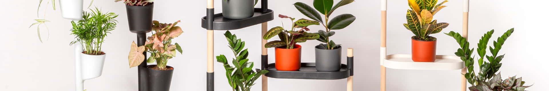CitySens best-selling products: vertical planters, plant shelves and wall planters.