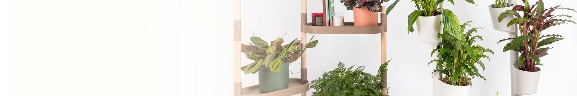 Soporte para plantas: jardín vertical, estantería para plantas y maceta de pared  | CitySens