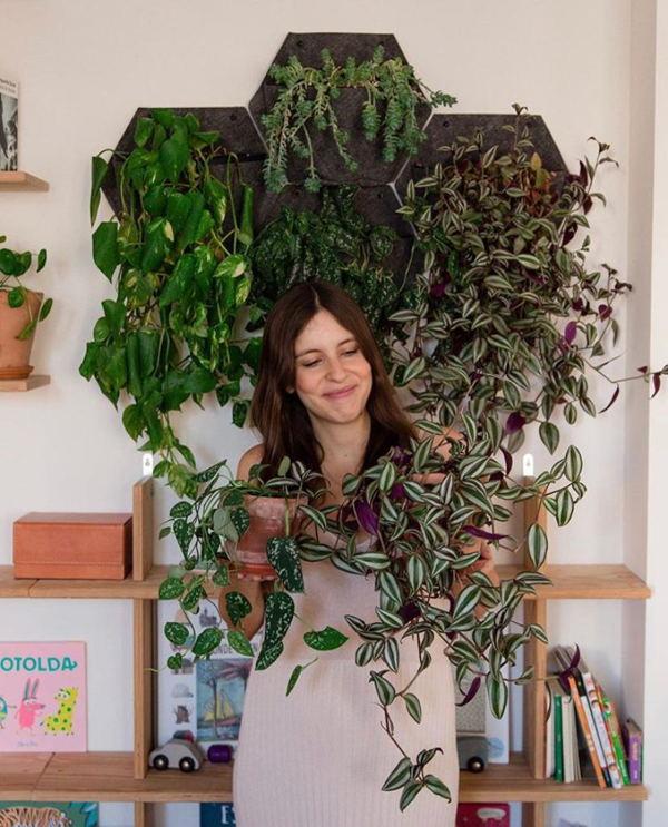 plantas para jardín vertical interior