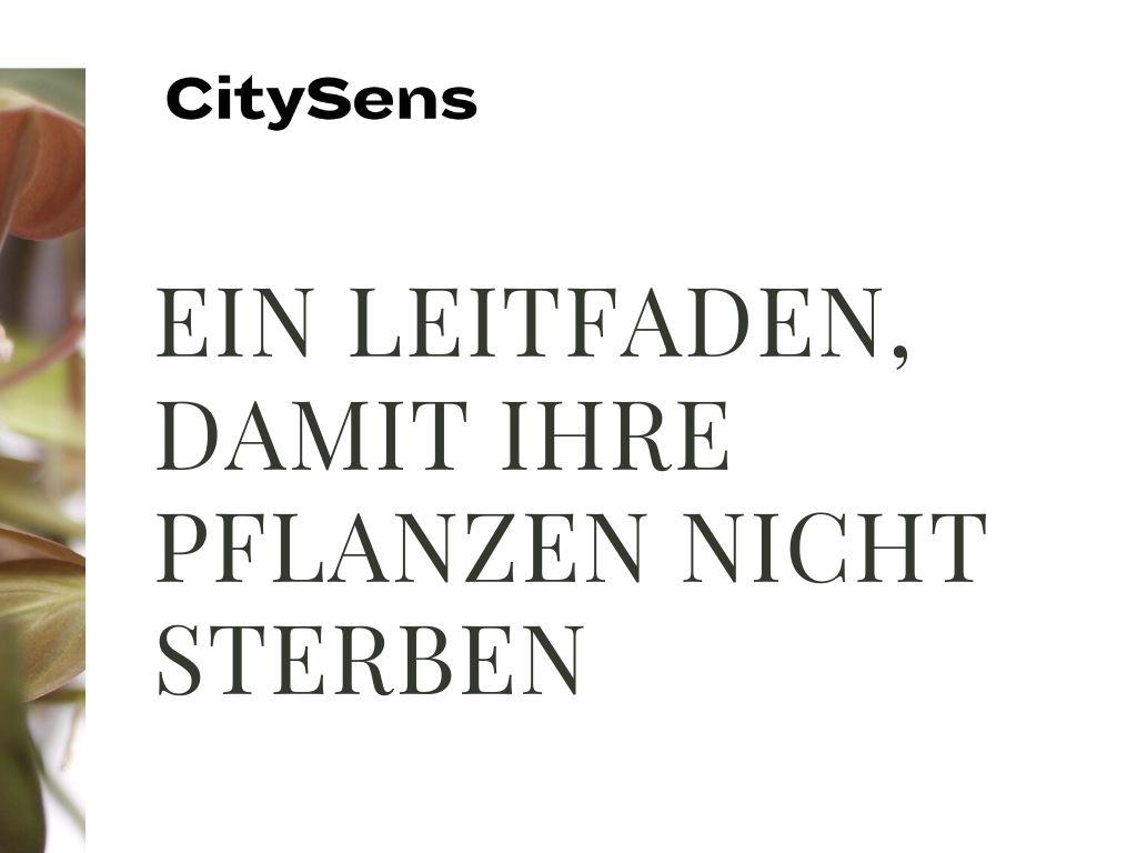 Guide de conseils CitySens
