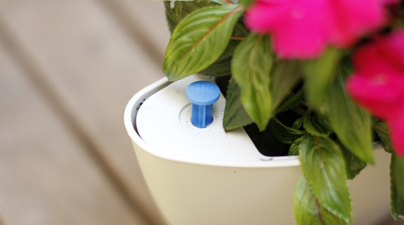 self-watering vertical planter