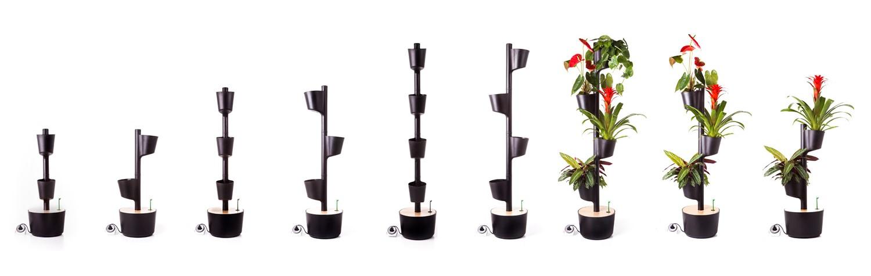 opciones de jardines verticales